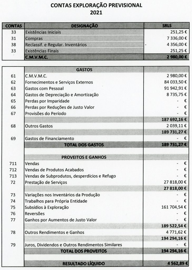 Ano civil 2021 (Orçamento)